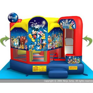 disney 5 in 1 combo ride